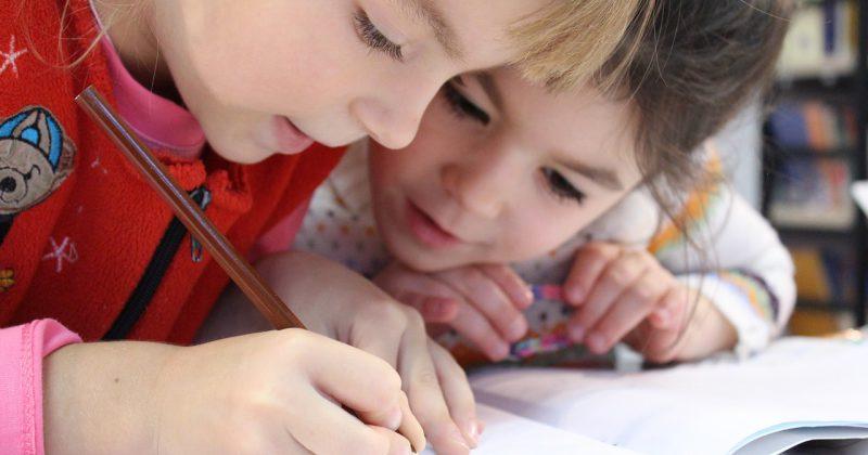 כיצד הדרכת הורים יכולה לעזור?